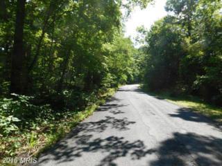 Rt 698 Lot 8 Sec 1, Mount Jackson, VA 22842 (#SH9721558) :: Pearson Smith Realty