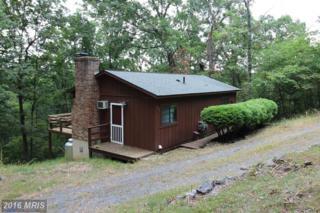 234 Mockingbird Lane, Mount Jackson, VA 22842 (#SH9774859) :: Pearson Smith Realty