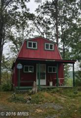 885 Maple Road S, Mount Jackson, VA 22842 (#SH9780512) :: Pearson Smith Realty