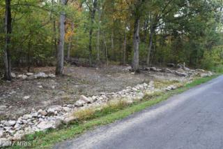 Cedar Lane, Woodstock, VA 22664 (#SH9796163) :: LoCoMusings
