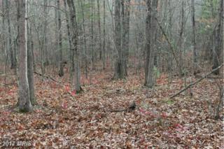 Mine Mountain Lane, Fort Valley, VA 22652 (#SH9814464) :: Pearson Smith Realty