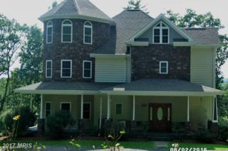 1107 Pepper Road, Mount Jackson, VA 22842 (#SH9816236) :: Pearson Smith Realty