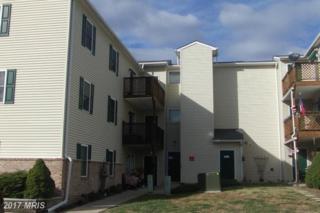 185 Hailey Lane H7, Strasburg, VA 22657 (#SH9822734) :: LoCoMusings