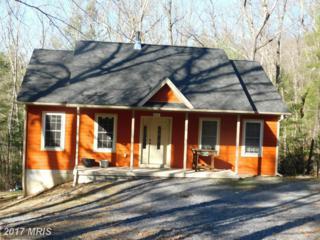 827 Mountain Slope Lane, Fort Valley, VA 22652 (#SH9885401) :: Pearson Smith Realty