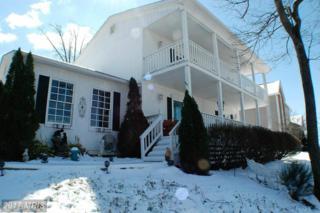 322 Fairchild Drive, Strasburg, VA 22657 (#SH9889188) :: Pearson Smith Realty