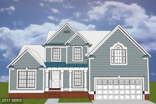 45270 Point Comfort Lane E, Piney Point, MD 20674 (#SM9610094) :: LoCoMusings