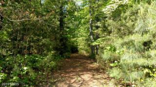 20255 Hawks Way, Leonardtown, MD 20650 (#SM9638390) :: Pearson Smith Realty