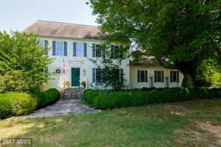 20914 Golden Thompson Road, Avenue, MD 20609 (#SM9715871) :: Pearson Smith Realty