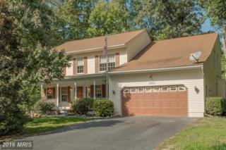 43903 Yellow Wood Way, California, MD 20619 (#SM9780736) :: Pearson Smith Realty