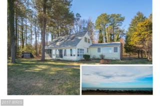 50781 Holly Point Road, Dameron, MD 20628 (#SM9875045) :: Pearson Smith Realty