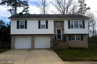45881 Mourning Dove Court, Great Mills, MD 20634 (#SM9881294) :: LoCoMusings