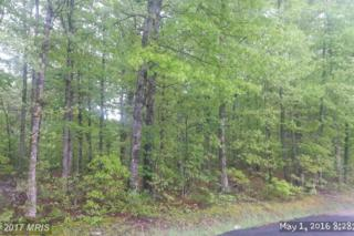 5111 Dickerson Road, Partlow, VA 22534 (#SP9644953) :: Pearson Smith Realty