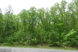 17138 Arrow Point Drive, Orange, VA 22960 (#SP9655112) :: Pearson Smith Realty