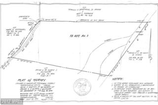 11011 Crooked Tree Lane, Spotsylvania, VA 22553 (#SP9674462) :: Pearson Smith Realty