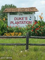 11703 Dukes Drive, Bumpass, VA 23024 (#SP9743051) :: LoCoMusings
