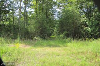 9010 Fox Run Drive, Spotsylvania, VA 22551 (#SP9745713) :: LoCoMusings