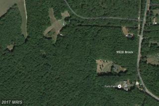 9928 Brock Road, Spotsylvania, VA 22553 (#SP9749566) :: Pearson Smith Realty