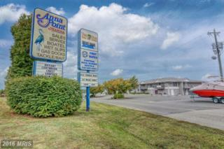 13705 Anna Point Lane #6, Mineral, VA 23117 (#SP9783396) :: Pearson Smith Realty