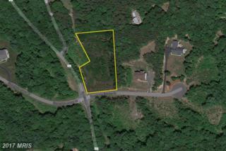 7415 Stonegate Estates Drive, Fredericksburg, VA 22407 (#SP9800587) :: LoCoMusings