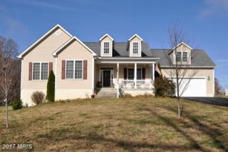 15603 Cedar Tree Court, Mineral, VA 23117 (#SP9822690) :: LoCoMusings
