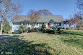 16205 Hickory Cut Lane, Mineral, VA 23117 (#SP9824340) :: LoCoMusings