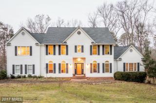 8405 Lee Jackson Circle, Spotsylvania, VA 22553 (#SP9831081) :: LoCoMusings