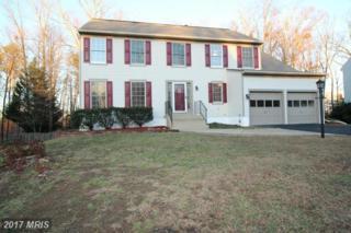 4807 Harvest Glen Court, Fredericksburg, VA 22408 (#SP9832194) :: Pearson Smith Realty