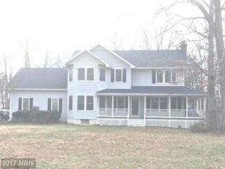 11402 Chinquapin Way, Fredericksburg, VA 22407 (#SP9833071) :: LoCoMusings