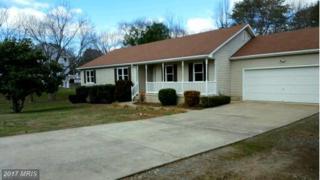 3925 Blackberry Lane, Fredericksburg, VA 22407 (#SP9836979) :: LoCoMusings