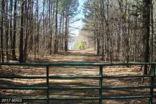 Governors Point Lane, Unionville, VA 22567 (#SP9862790) :: LoCoMusings