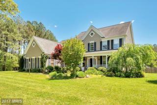 9047 Pine Acres Way, Spotsylvania, VA 22551 (#SP9873902) :: Pearson Smith Realty