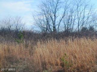 5507 Dogwood Tree Lane, Mineral, VA 23117 (#SP9878377) :: Pearson Smith Realty