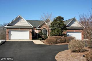 5600 Dogwood Tree Lane, Mineral, VA 23117 (#SP9879218) :: LoCoMusings