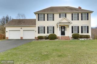 5510 Heritage Hills Circle, Fredericksburg, VA 22407 (#SP9889409) :: LoCoMusings