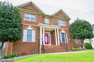 12016 Paddock Place, Fredericksburg, VA 22407 (#SP9893466) :: Pearson Smith Realty