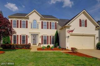 9203 Maple Valley Drive, Fredericksburg, VA 22407 (#SP9917234) :: Pearson Smith Realty