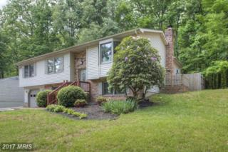 6107 Oak Grove Drive, Fredericksburg, VA 22407 (#SP9928925) :: Pearson Smith Realty