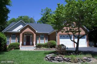 4205 Mount Vernon Place, Fredericksburg, VA 22408 (#SP9931890) :: Pearson Smith Realty