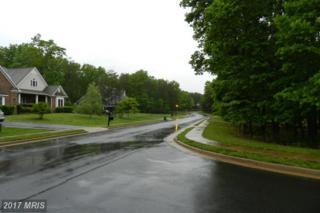 11307 Westgate Way, Spotsylvania, VA 22551 (#SP9938338) :: Pearson Smith Realty