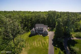 10007 N. Harris Farm Road, Spotsylvania, VA 22553 (#SP9938350) :: Pearson Smith Realty