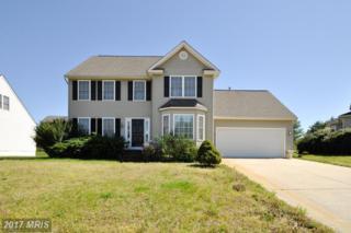 11503 Heronview Drive, Fredericksburg, VA 22408 (#SP9954515) :: Pearson Smith Realty