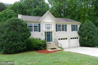 11205 Surry Woods Court, Fredericksburg, VA 22407 (#SP9955982) :: Pearson Smith Realty