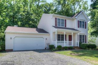 3809 Overview Drive, Fredericksburg, VA 22408 (#SP9958669) :: Pearson Smith Realty