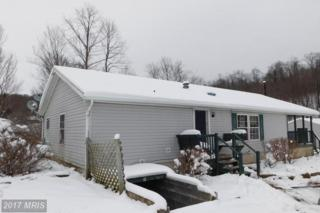 106 Distillery Road, Meyersdale, PA 15552 (#SS9849865) :: Pearson Smith Realty