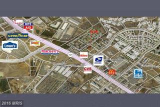45 Lichfield Boulevard, Fredericksburg, VA 22406 (#ST9729409) :: Pearson Smith Realty