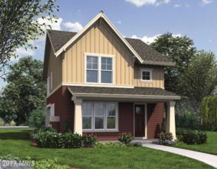 Leeland Road, Fredericksburg, VA 22405 (#ST9802156) :: Pearson Smith Realty