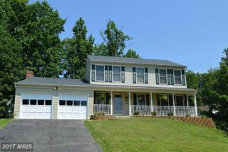 10 Maple Leaf Court, Stafford, VA 22554 (#ST9819301) :: Pearson Smith Realty