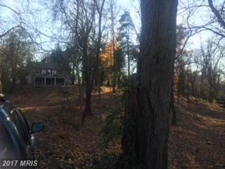260 White Oak Road, Fredericksburg, VA 22405 (#ST9822205) :: Pearson Smith Realty