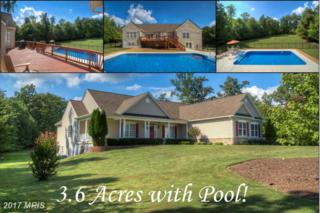 325 Gentle Breeze Circle, Fredericksburg, VA 22406 (#ST9834197) :: Pearson Smith Realty
