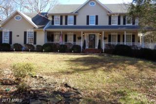 4 Trotter Lane, Fredericksburg, VA 22406 (#ST9835301) :: Pearson Smith Realty